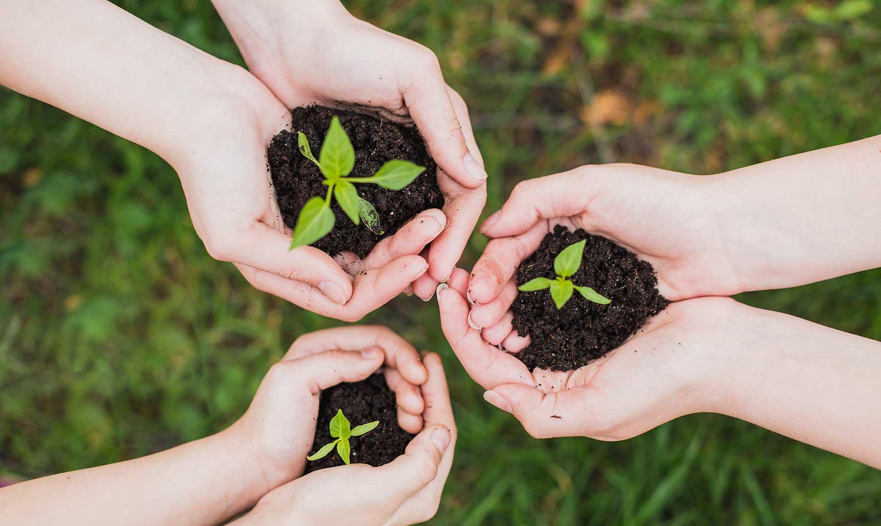 actividades para fomentar el cuidado del medio ambiente