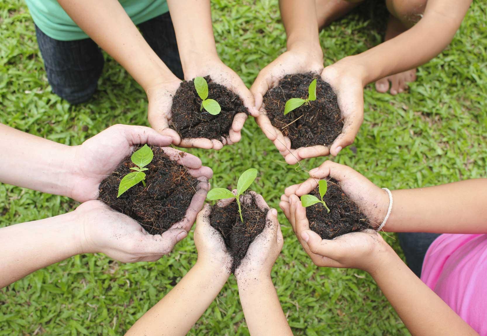 comunidad ecológica