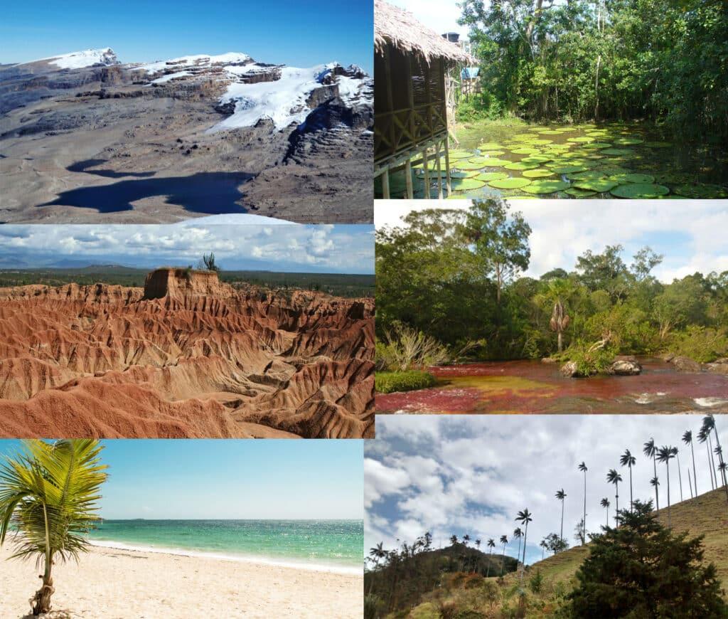 Ecosistemas en Colombia