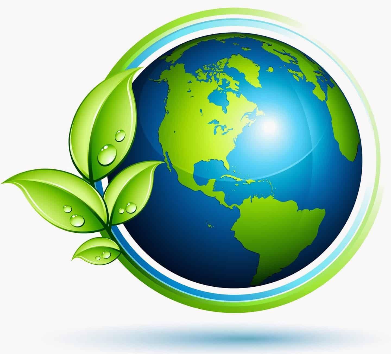 niveles de organización de la ecología