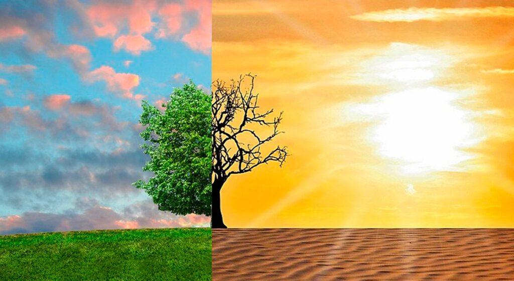 Transformación de la naturaleza