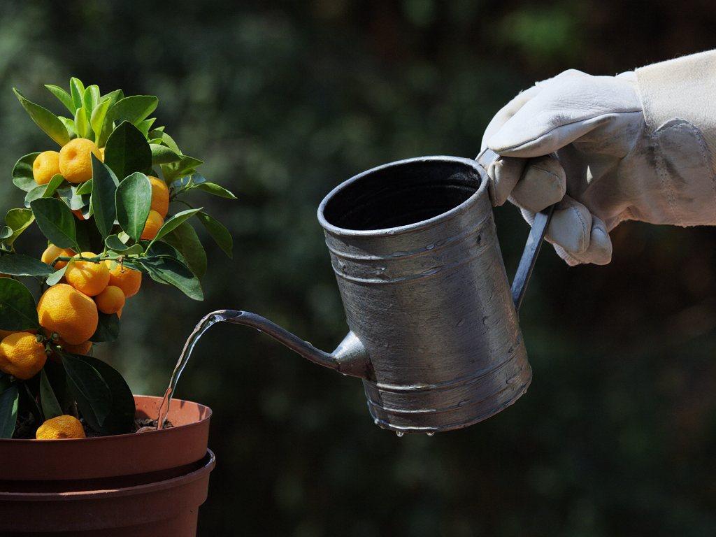 usos del agua destilada