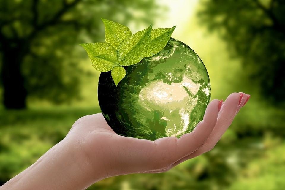 Valores ecológicos